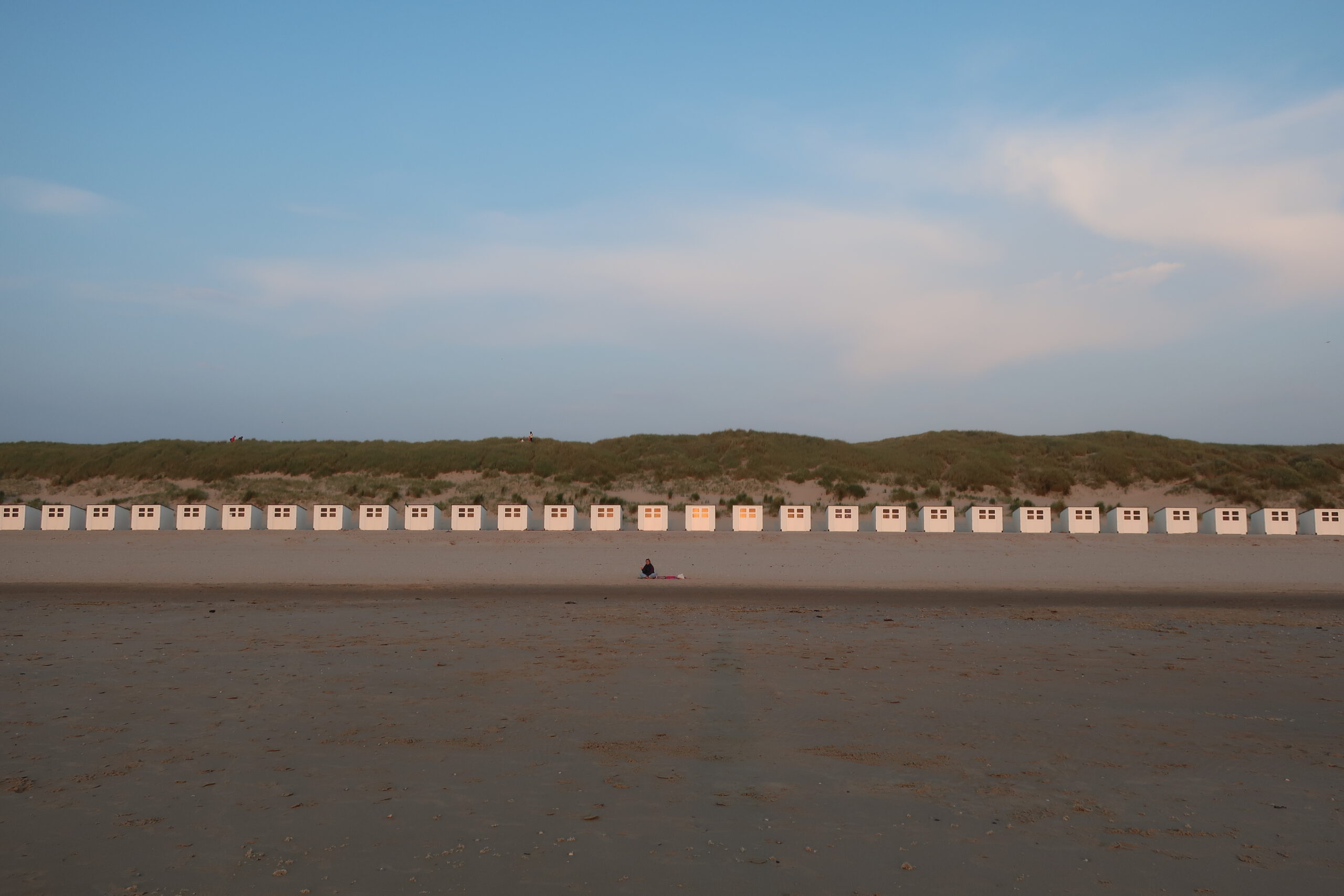 Read more about the article Texel – Kurz und knapp
